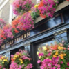 The ultimate guide of London's  best pubs