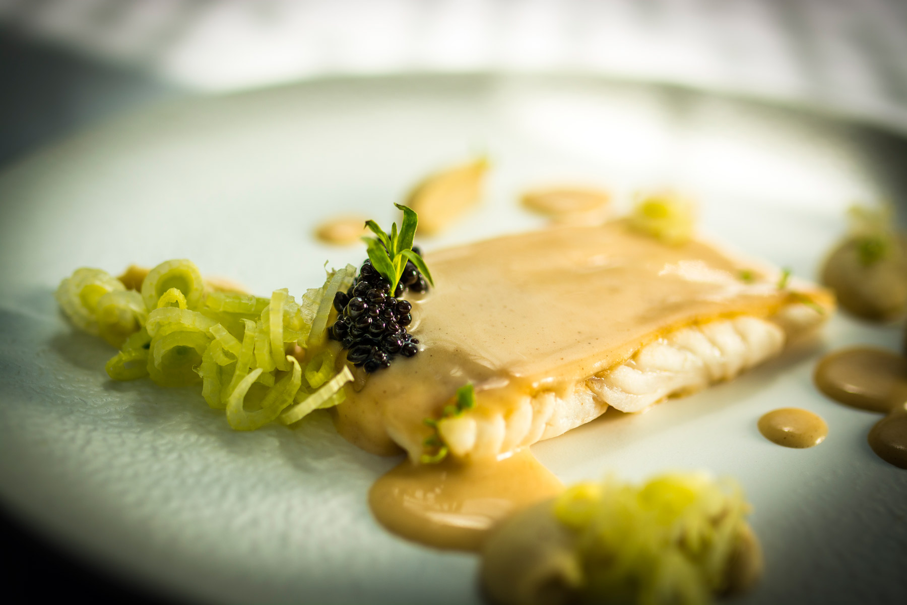 Turbot, 'Meuniere Citrica', Fennel and Tarragon