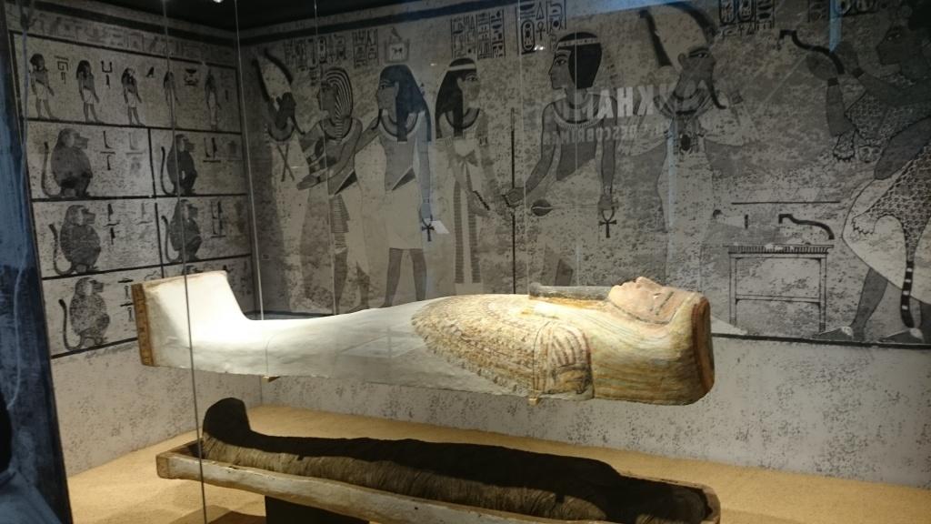 museu egipci Nit dels Museus Barcelona